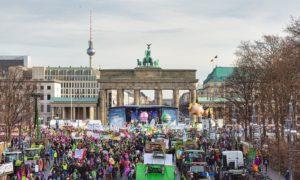 fot. Nick Jaussi/www.wir-haben-es-satt.de